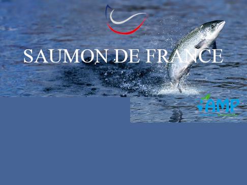 Agrilend   projet ferme urbaine en aquaponie paris   image vignette projet new 27bd7623
