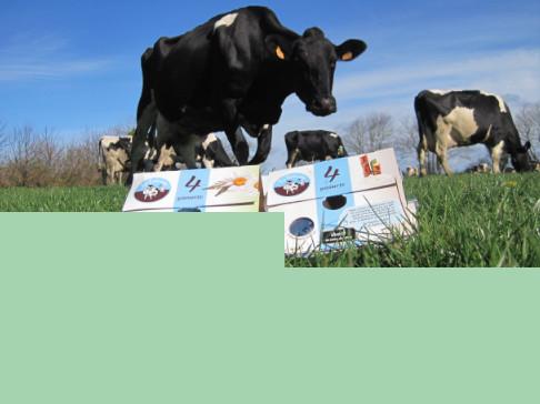 Image vignette projet gaec gorrequer elevage vache yaourts bio 83c33abd