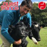 Thumbnail image article ouest france agrilend gaec gorrequer la ledanaise projet yaourts bio 201910 68c4a928
